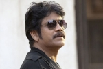 Nagarjuna, Nagarjuna next, nag signs a bollywood flick, Brahmastra
